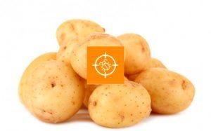 Действующие инсектициды для картофеля