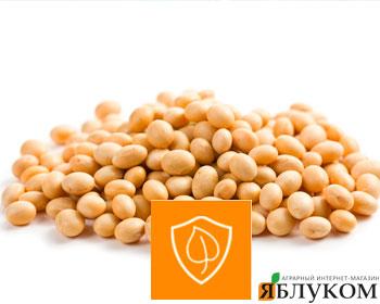 Эффективность действующих веществ фунгицидов для защиты сои от болезней.