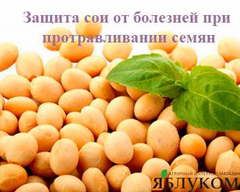 Защита сои от болезней при протравливании семян