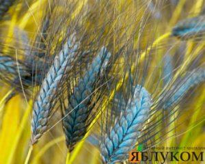 Немецкие сорта зерновых