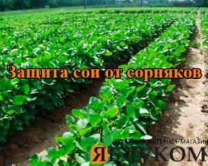 Защита сои от сорняков