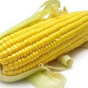 [:ru]Семена кукурузы ДМС 3411[:ua]Насіння кукурудзи ДМС 3411[:]