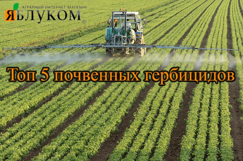 Топ 5 ґрунтових гербіцидів