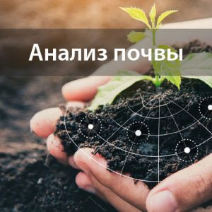 Анализ почвы от «Яблуком»
