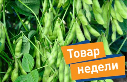 Семена сои Хайстар