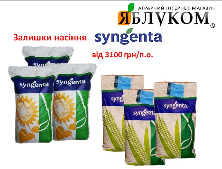 Распродажа остатков подсолнечника и кукурузы Сингента урожая 2016-2019 гг