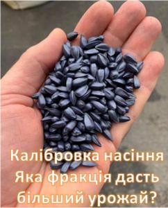Стандарт или элит +, основа или эконом – какая калибровка семян лучше всего?